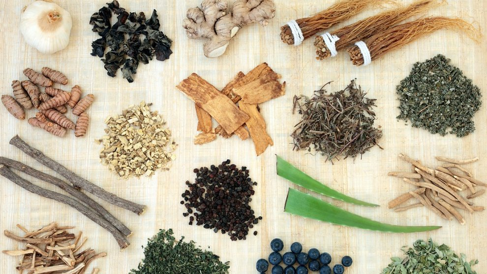 The Many Benefits of Adaptogens